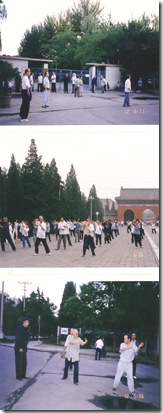 Scan10066