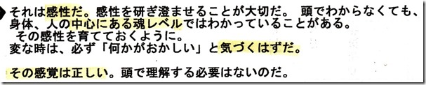 IMG13[1]